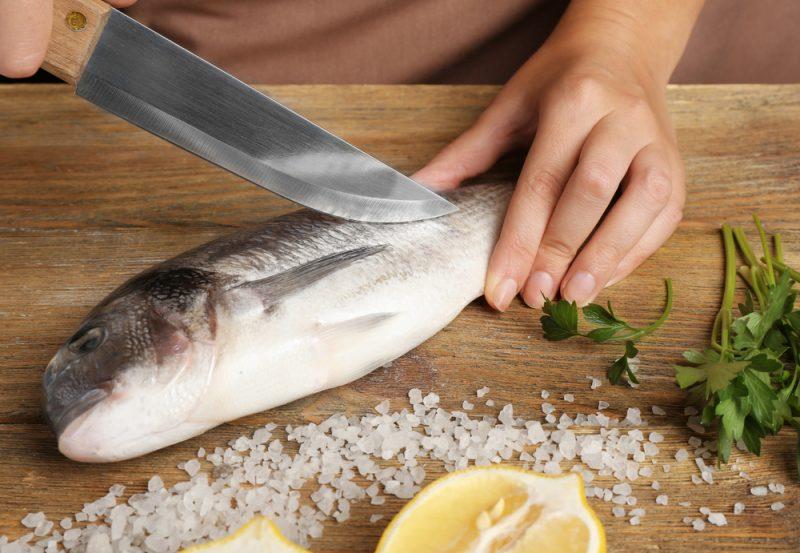 Nůž na ryby